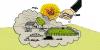 Cartilha Venenos na Agricultura e no Lar