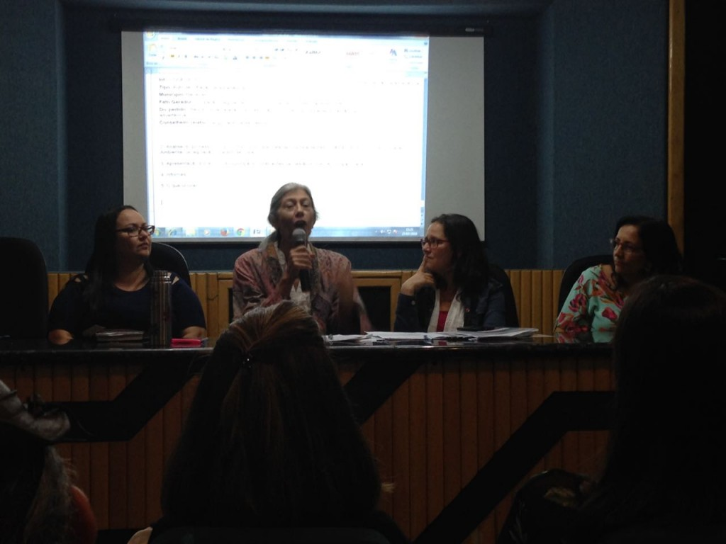 Maria Alice Cintra durante a aprovação da resolução pelo Cepram